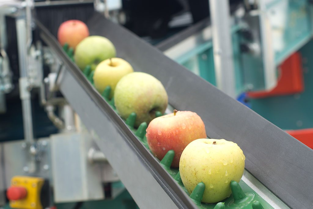 The American food industry is a complex colective of diverse businesses that supply most of the food we consume.